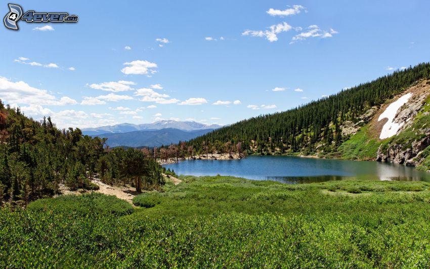 mountain lake, hill, greenery