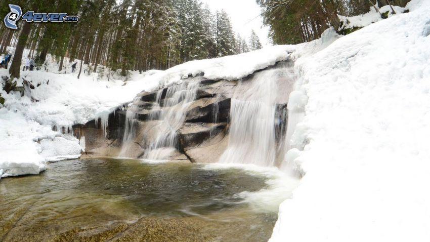 Mumlava waterfall, snow, forest
