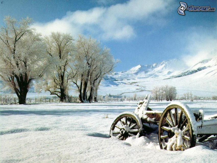 old wooden chariot, snow, frozen trees, winter