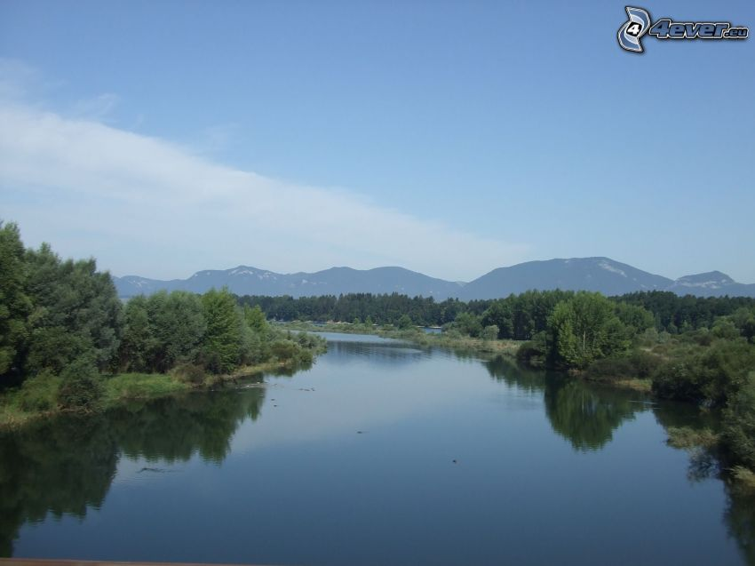 River, water, forest, sky, mountains