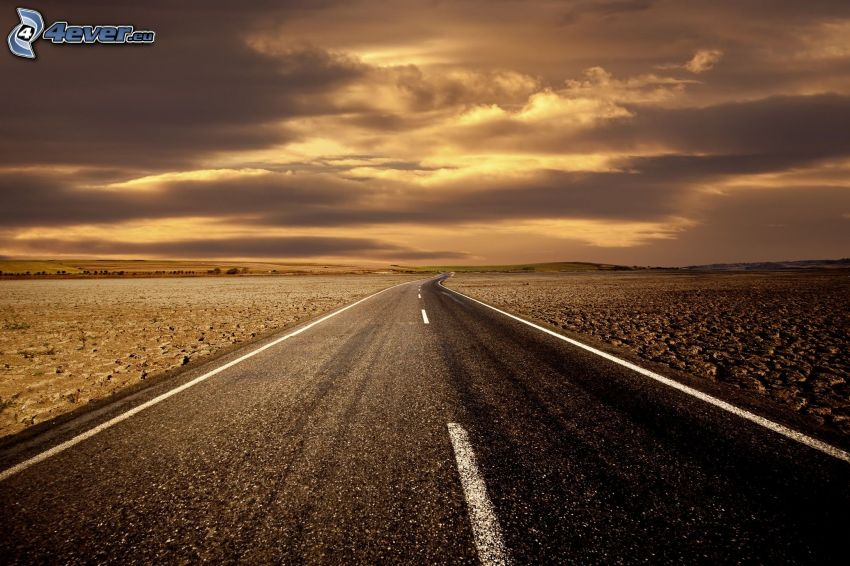 road, desert