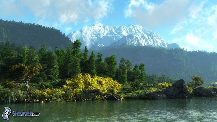 snowy hill, forest, River