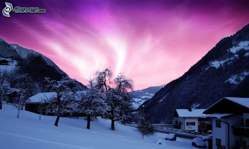 snowy landscape, houses, purple sunset