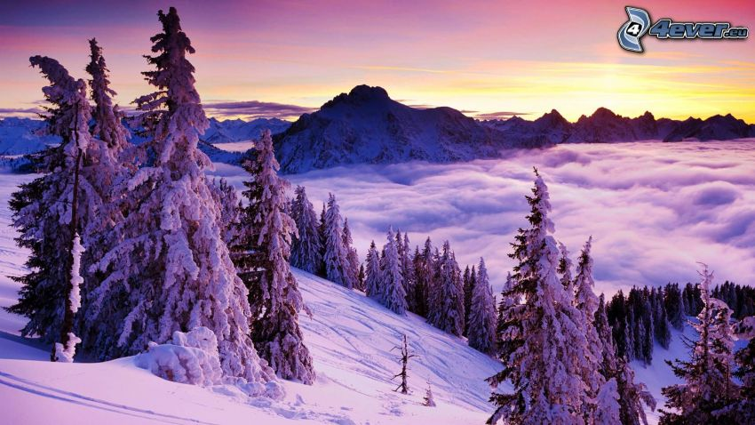 snowy landscape, over the clouds, evening sky