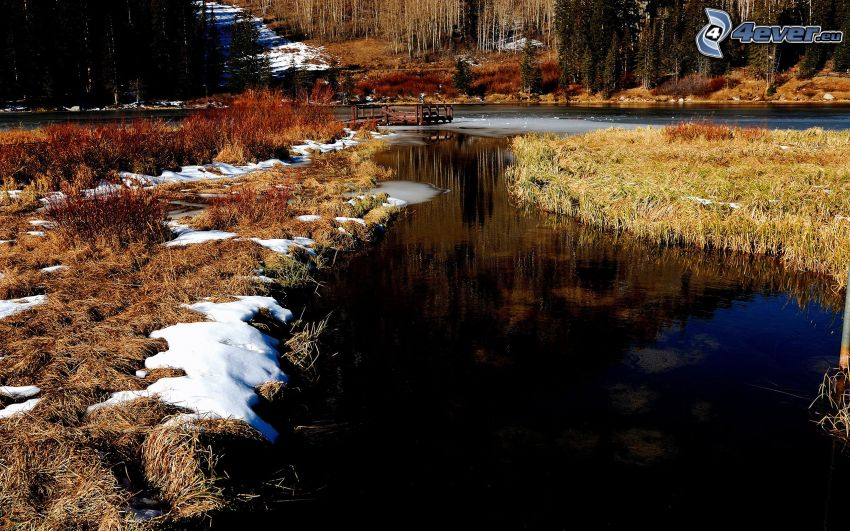 stream, dry grass, snow