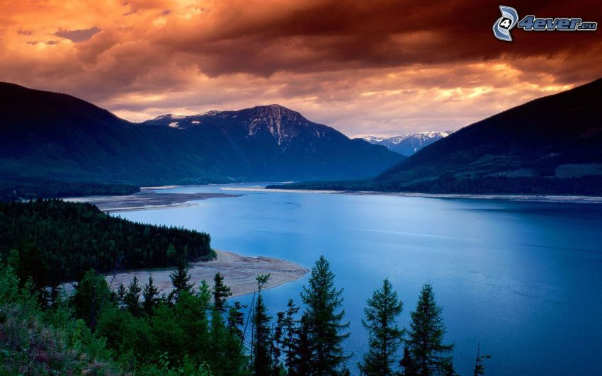 Upper Arrow Lake, British Columbia, water, coniferous forest