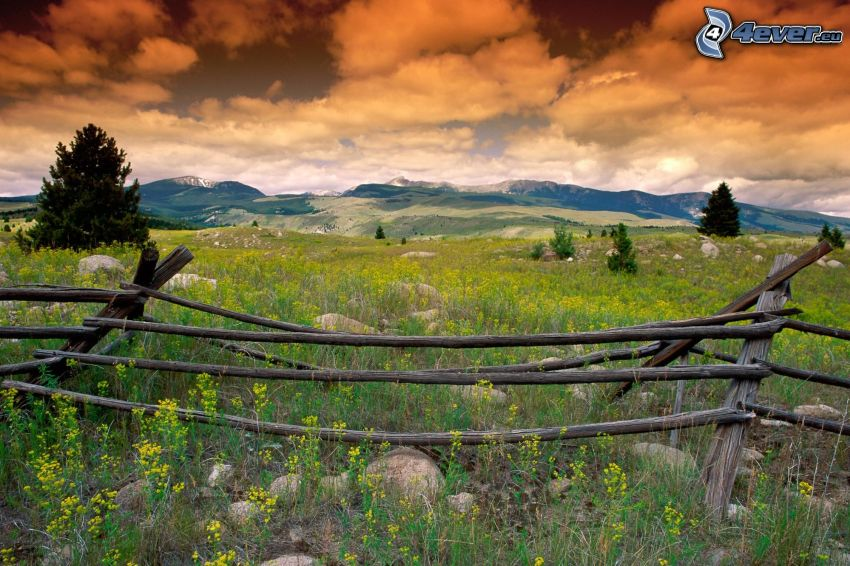 view of the landscape, old wooden fence, meadow, Montana