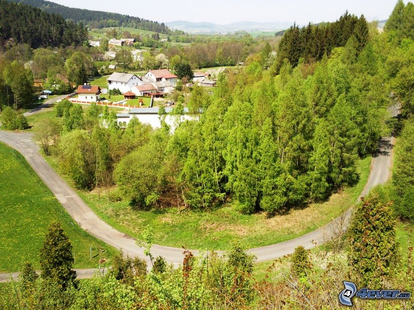 village in the valley, houses, road through forest, road curve, green trees, green forest