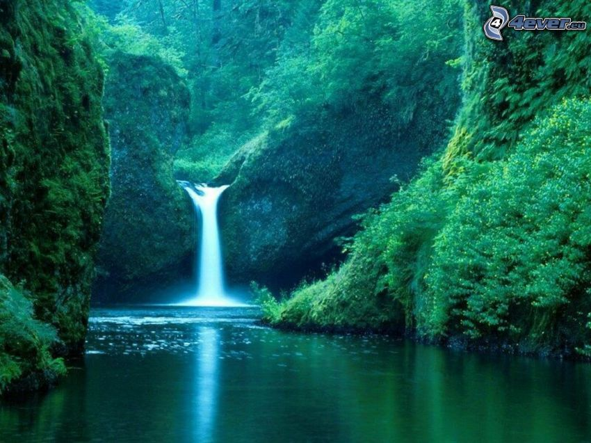 waterfalls, jungle, stream
