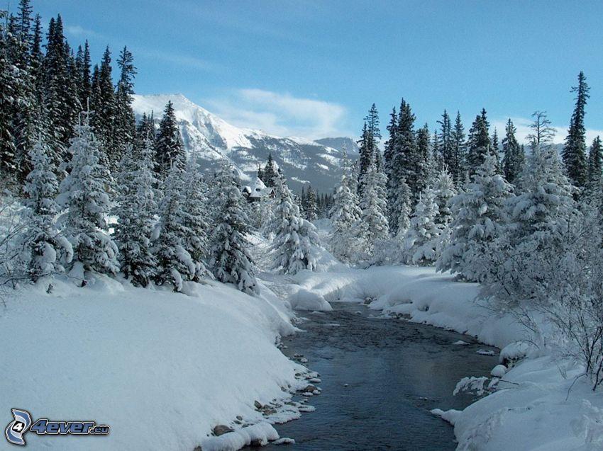 winter landscape, snow, stream