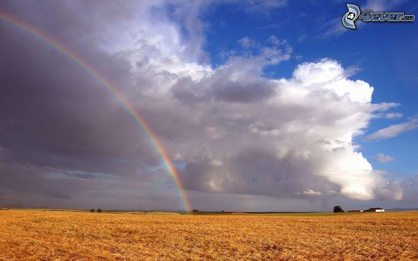 meadow, rainbow, clouds