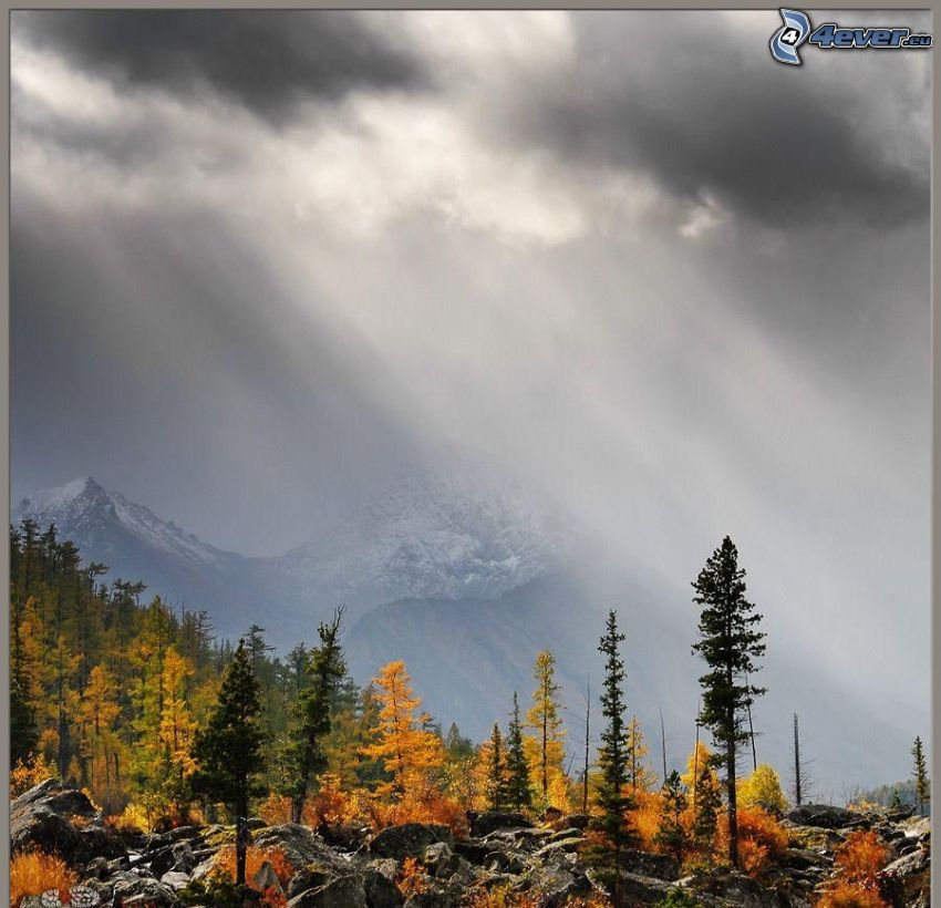 autumn trees, rocks, snowy mountains, fog, clouds