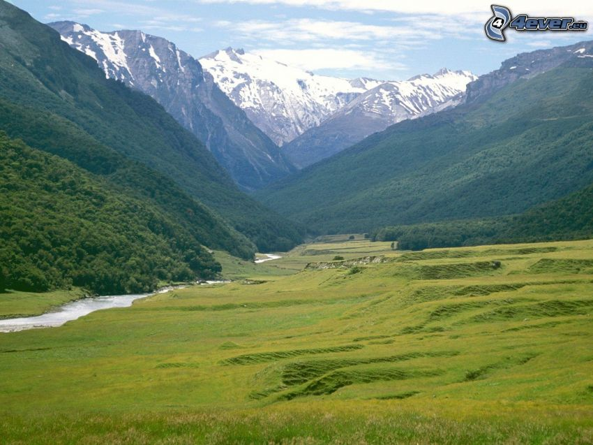 green meadow, high mountains, snowy mountains, valley