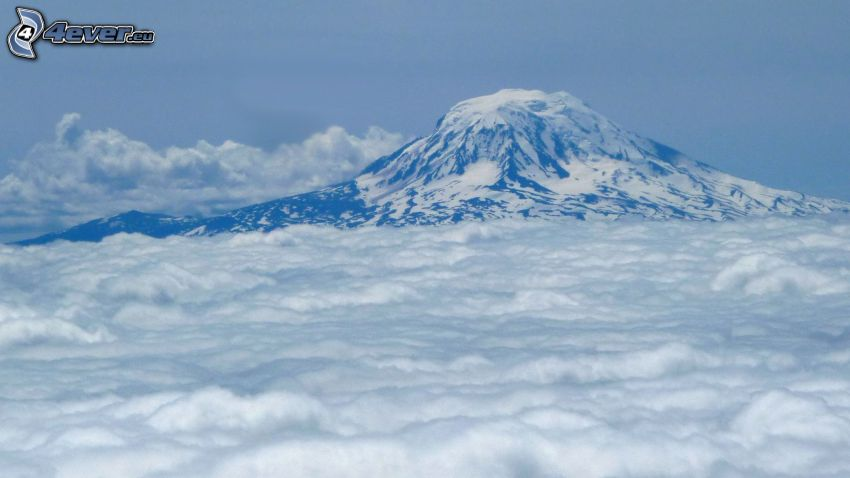 Mount Adams, snowy hill, over the clouds
