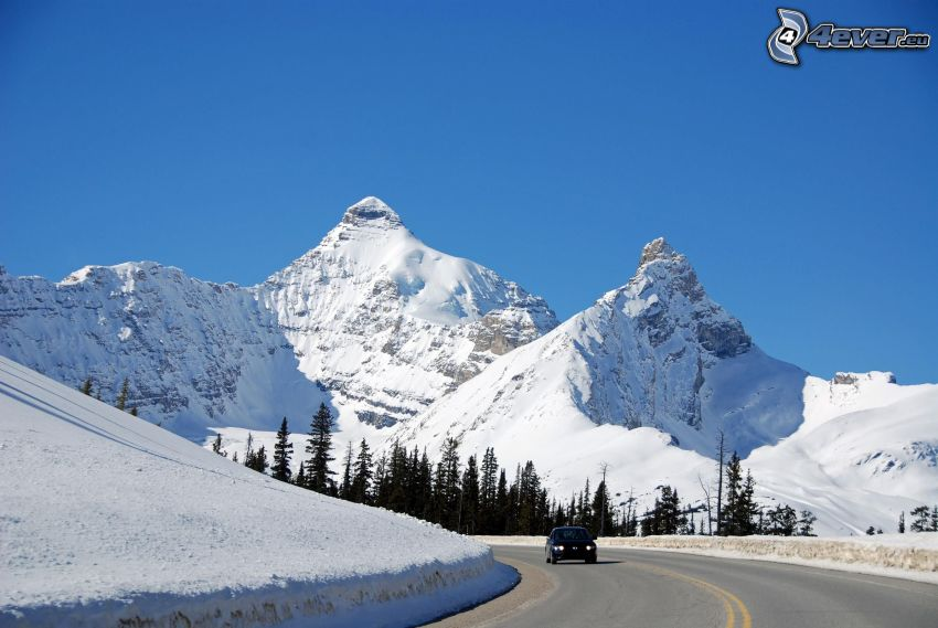 Mount Athabasca, snowy mountains, road