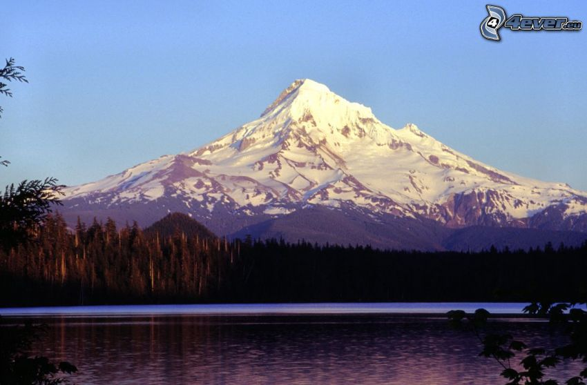 Mount Hood, snowy hill, forest, lake