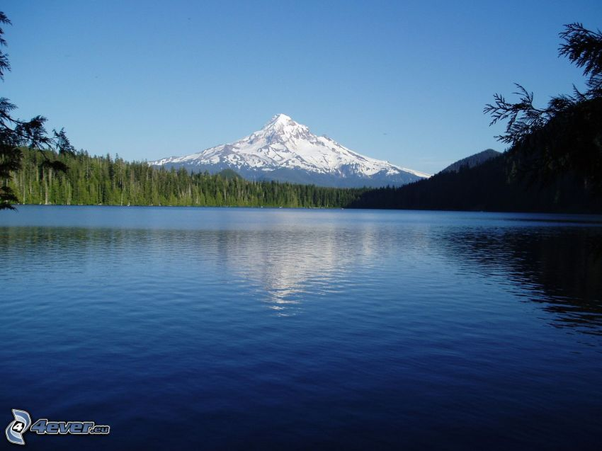 Mount Hood, snowy hill, lake, forest