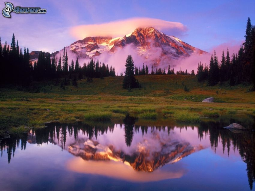 Mount Rainier, Washington, USA, snowy mountain above the lake, snowy mountain in clouds, forest, meadow, mountain lake, reflection