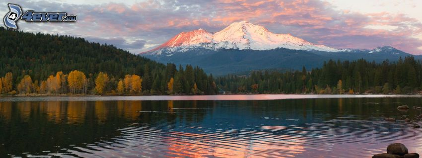 Mount Shasta, mountain lake, forest, snowy hill