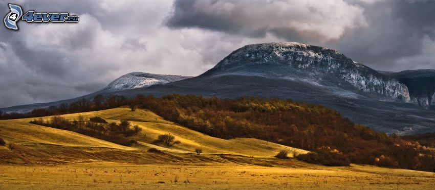 rocky hill, snow, trees