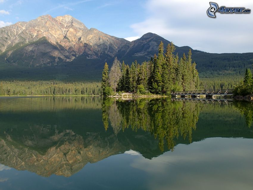 rocky mountain, coniferous forest, lake, reflection