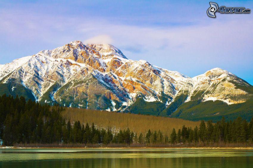 snowy mountains, coniferous trees, lake