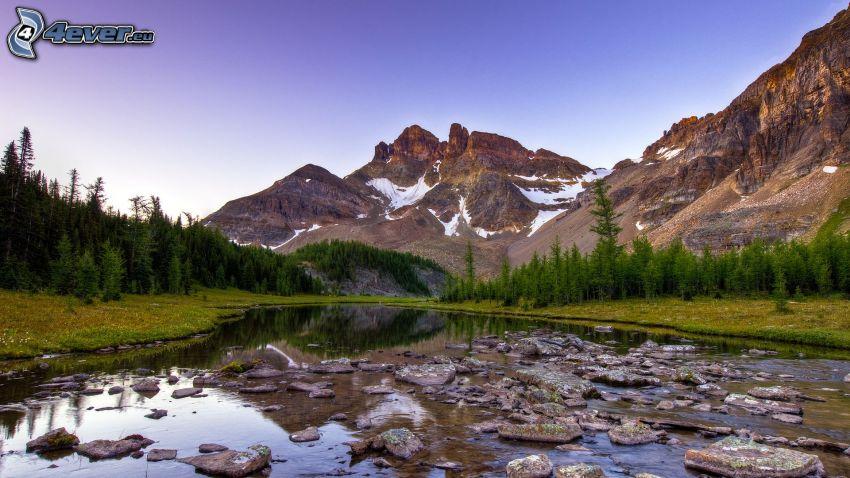 stream, rocks, mountains, snow, coniferous trees