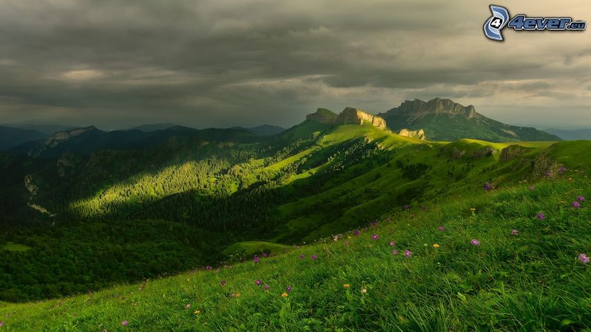 view of the landscape, rocky hills, meadow, purple flowers, grass, clouds