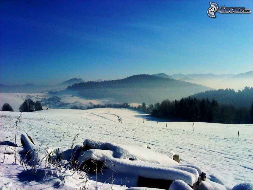 winter, field, mountains, snow