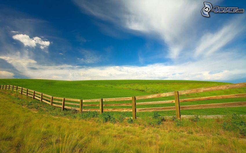 palings, meadow, sky