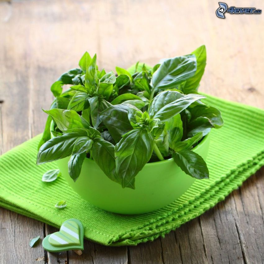 basil, bowl, heart