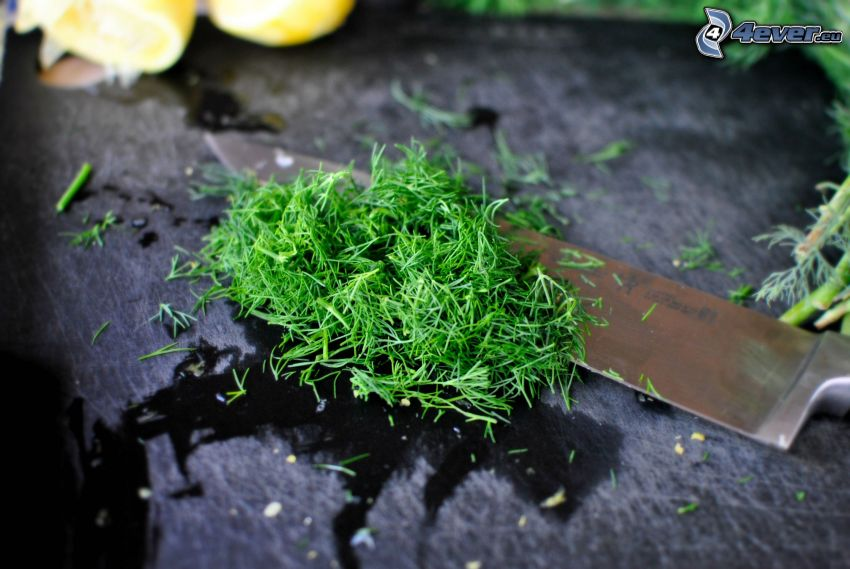 dill, knife