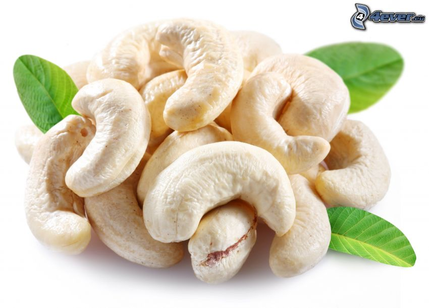 Cashew nuts, green leaves