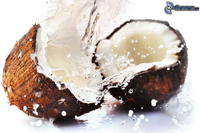 coconut, water, splash