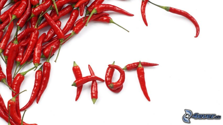 HOT, red chilli pepper
