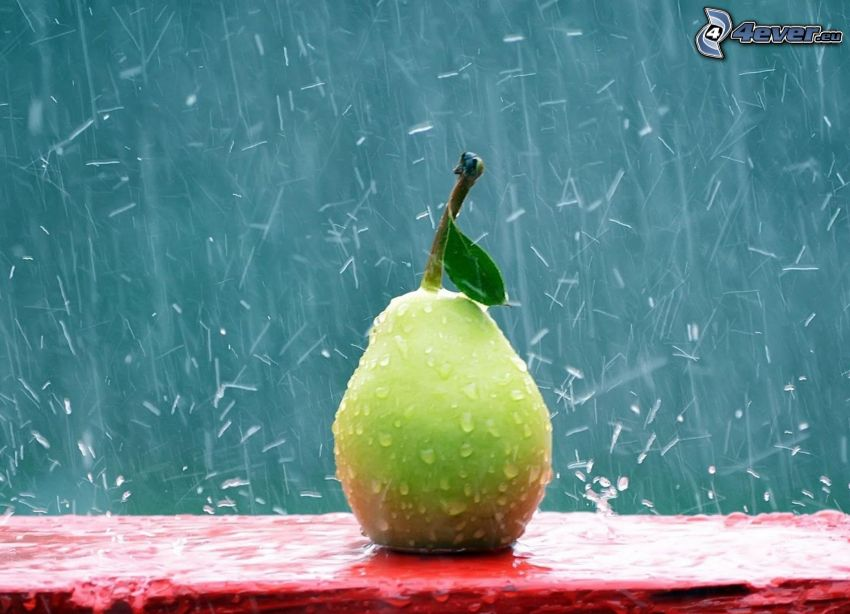 pear, rain