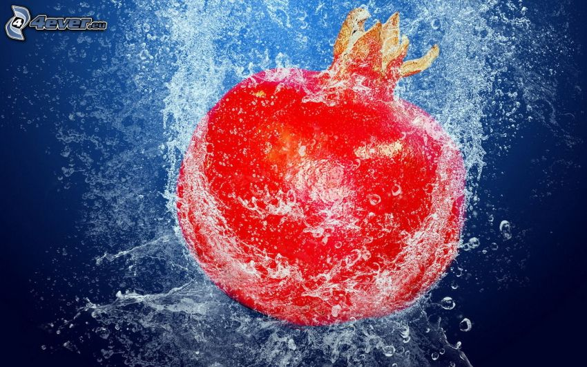 pomegranate, water, splash