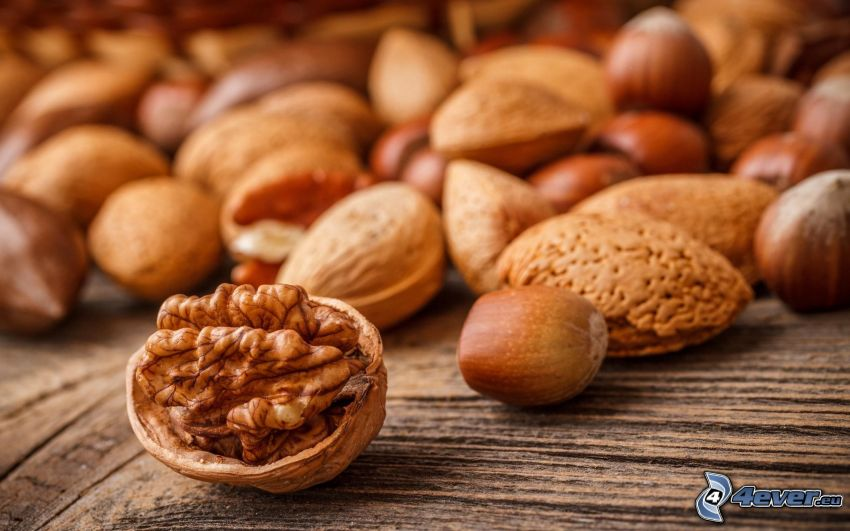 walnuts, hazelnuts, brazil nuts