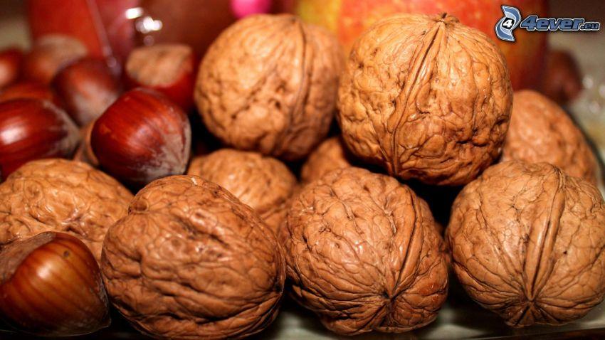 walnuts, hazelnuts