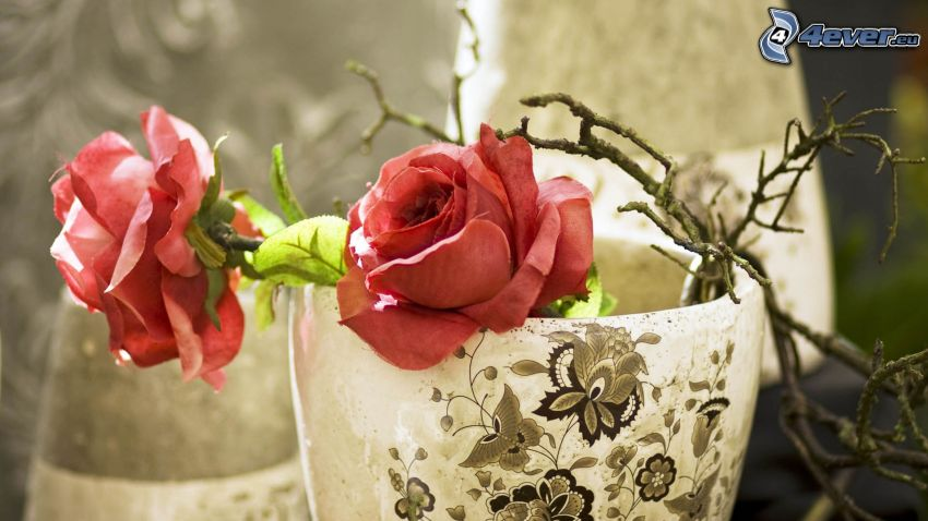 red roses, branches, vase