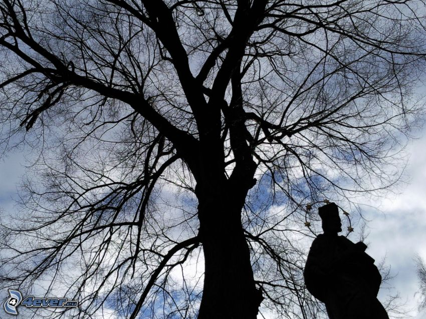silhouette of tree, statue, sky