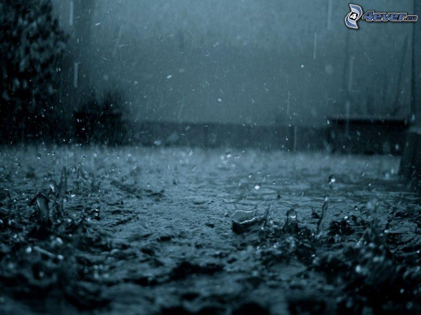 rain, drops