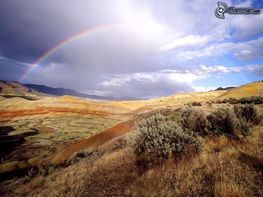rainbow, clouds, landscape, bushes