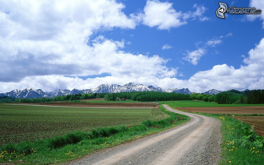 road, field, snowy mountains, clouds