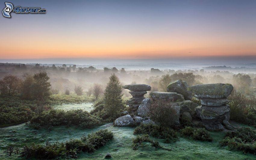 rocks, forest, valley, ground fog