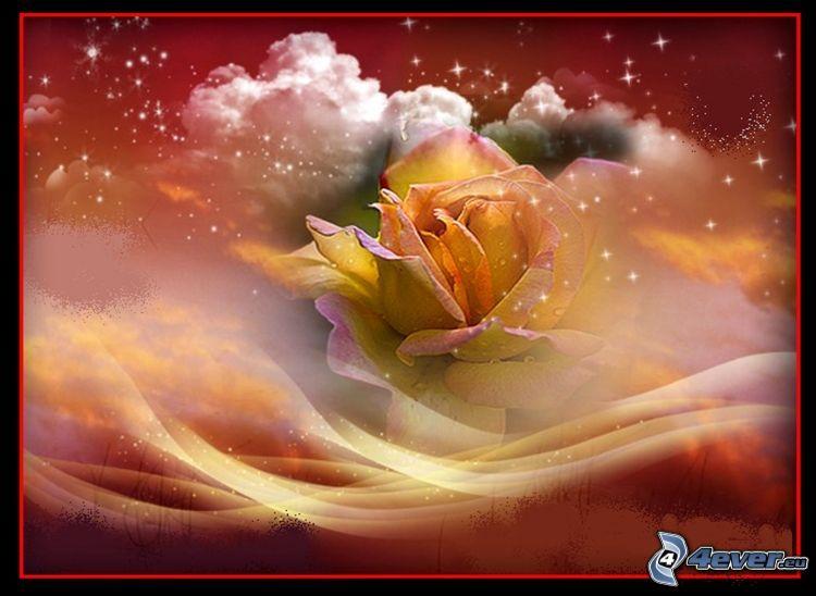 rose, clouds