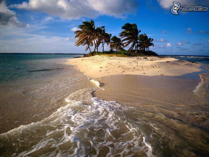 Anguilla, Caribbean, Palm Island, sandy beach