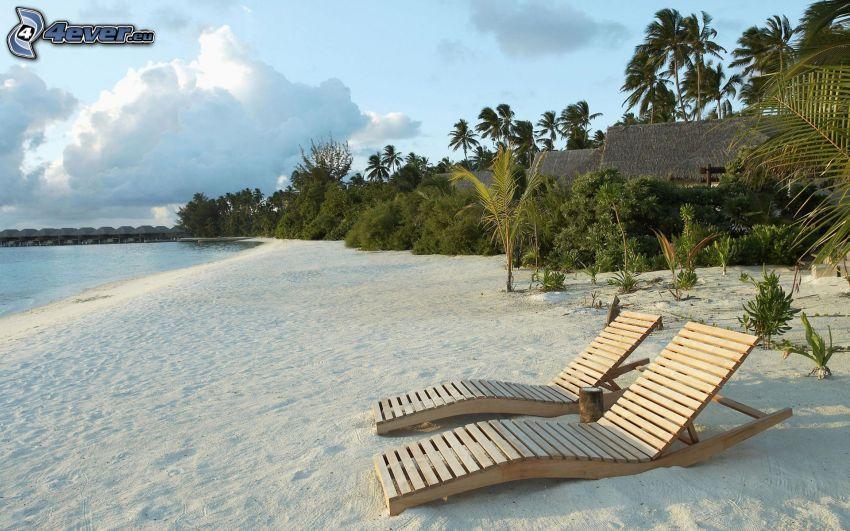 deck chairs on the beach, sandy beach, palm trees