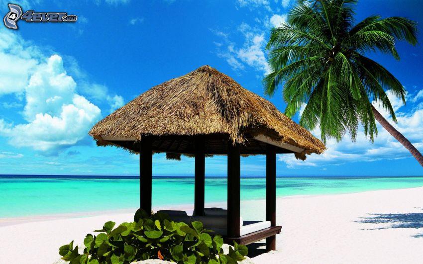 gazebo, palm tree, sandy beach