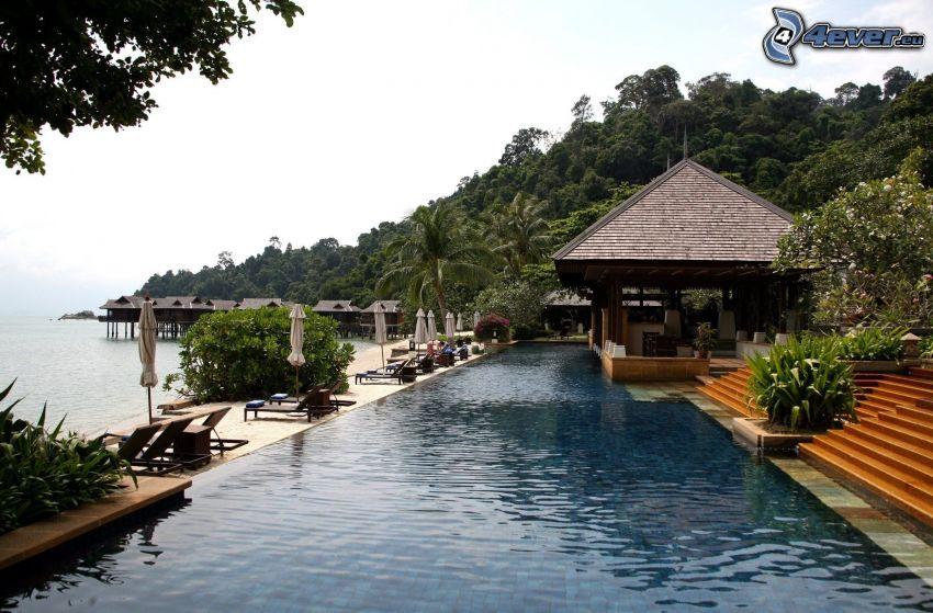house, pool
